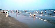 Bãi biển Trà Cổ