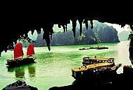Hang Bồ Nâu