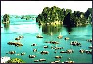 """Quảng Ninh: """"chung tay bảo vệ di sản Vịnh Hạ Long""""."""