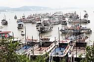 """Vịnh Hạ Long: """"Dừng cấp phép cấp bến tàu tham quan Du lịch""""."""