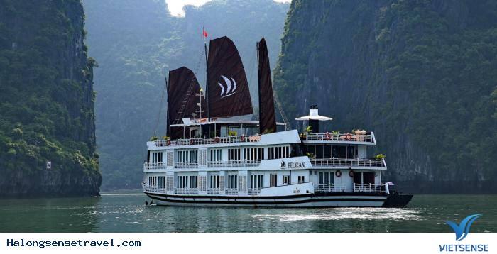 Du thuyền Pelican Luxury,du thuyen pelican luxury