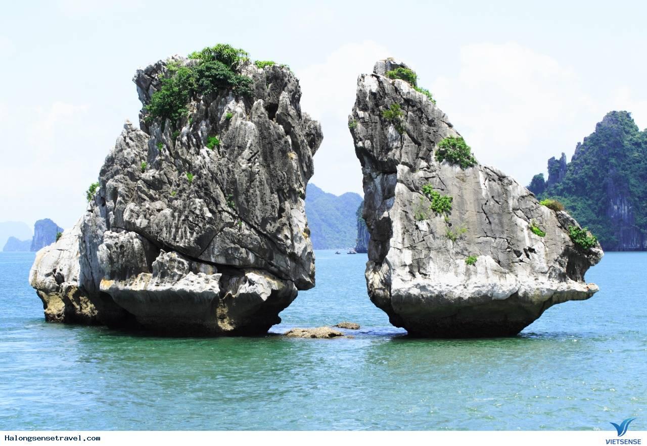 Tour Du Lich Ha Long 1 Ngay, Du Lịch Hạ Long 1 Ngày Giá Rẻ